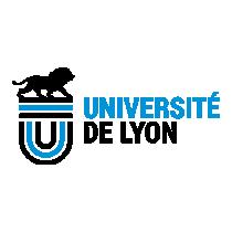 UNIVERSITE DE LYON